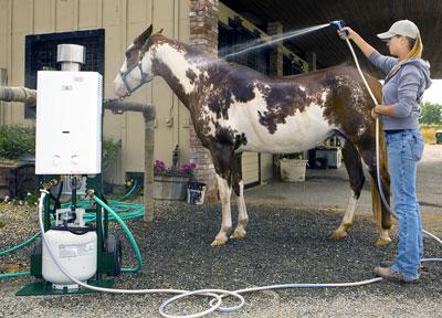 Decker S Horse Washer Amp Pet Shower